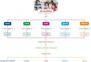 img_sentidos_1